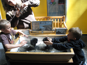 12_Explo_magnetic sand_0473